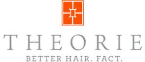 theorie-logo